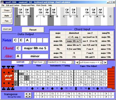 musicord screen image